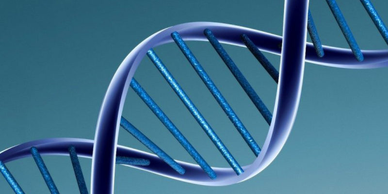 Rewriting DNA? Join discussion on synthetic biology