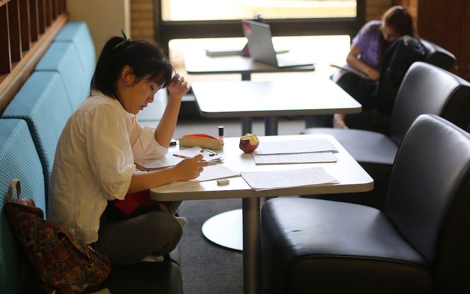 Two students study in library