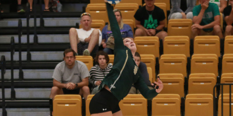 Final home volleyball games set this weekend
