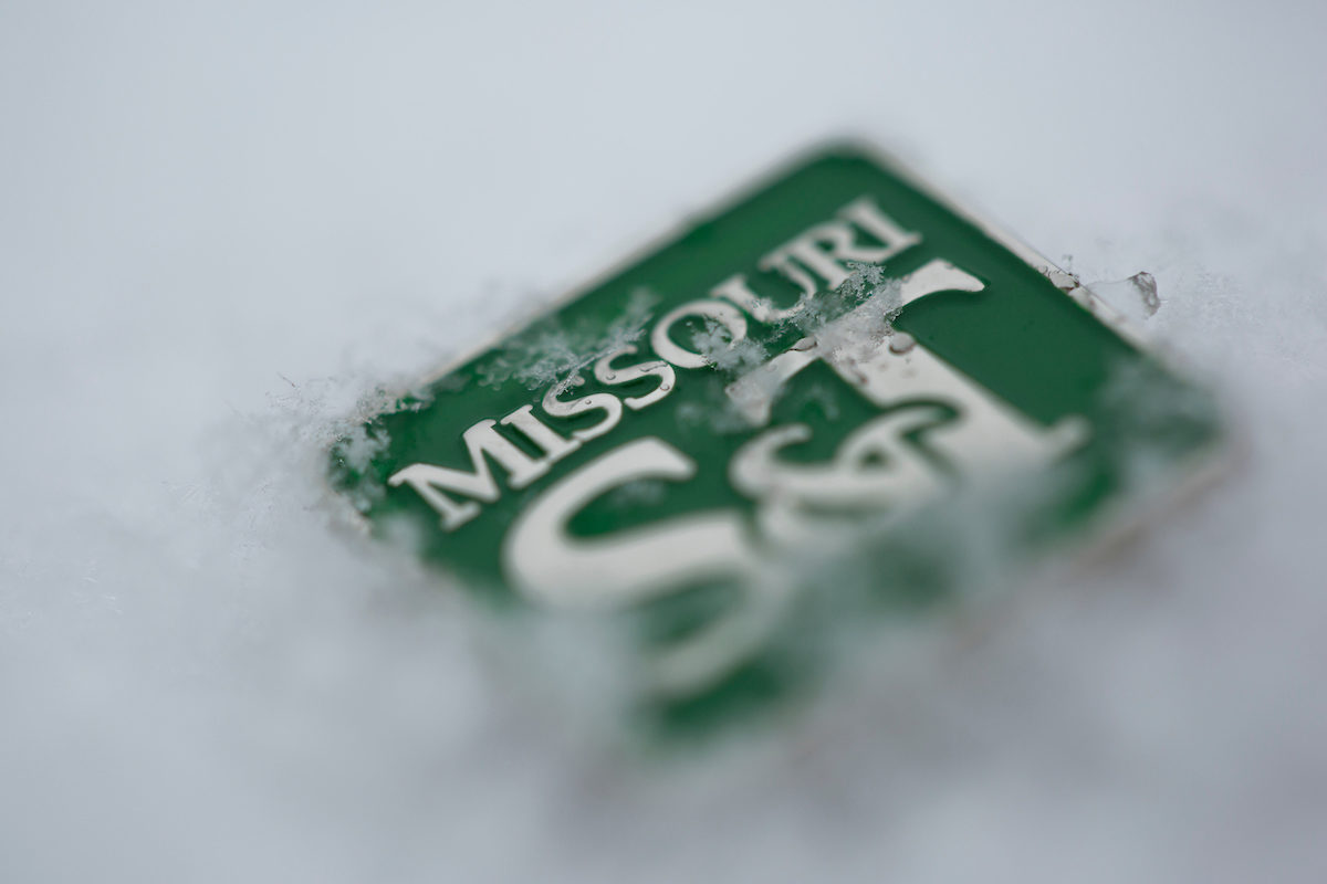 S&T pin in snow