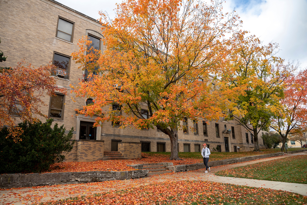 Fall trees on campus