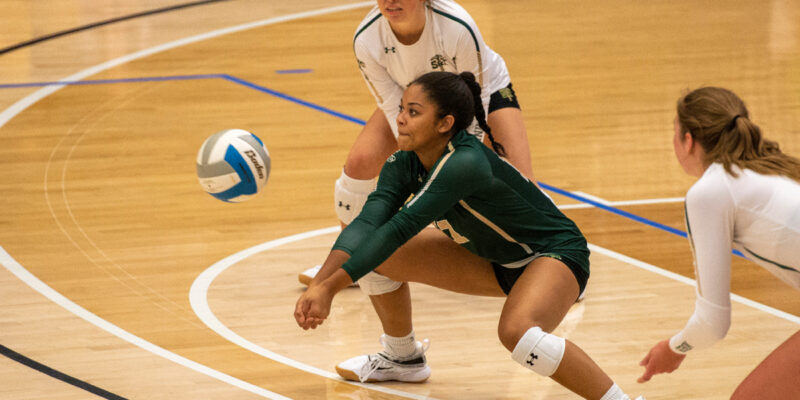 Get free admission to volleyball games this weekend